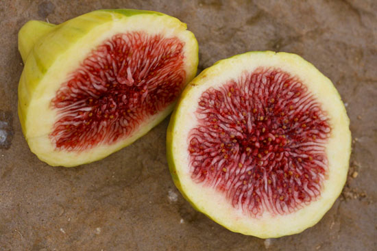 Fresh striped fig cut in half