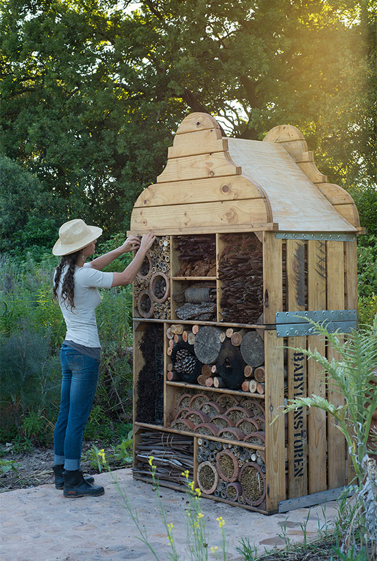 insecthotel_header