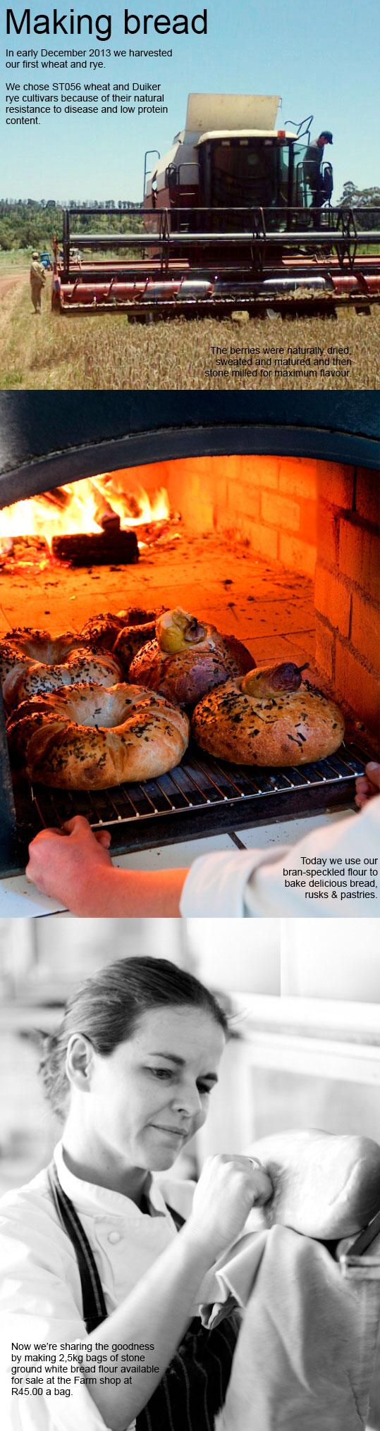 bread-blog2