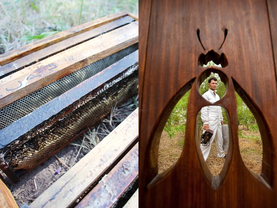 Babylonstoren honey bee cage and symbol