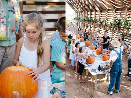Pumpkin Carving at Babylonstoren