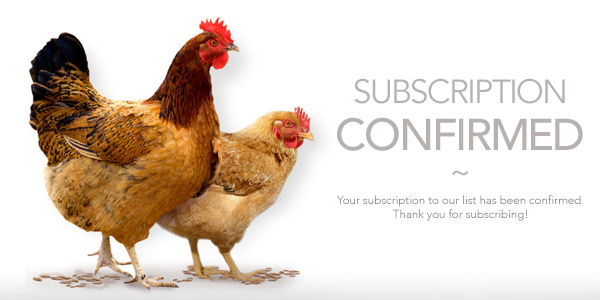 subscription-confirmed