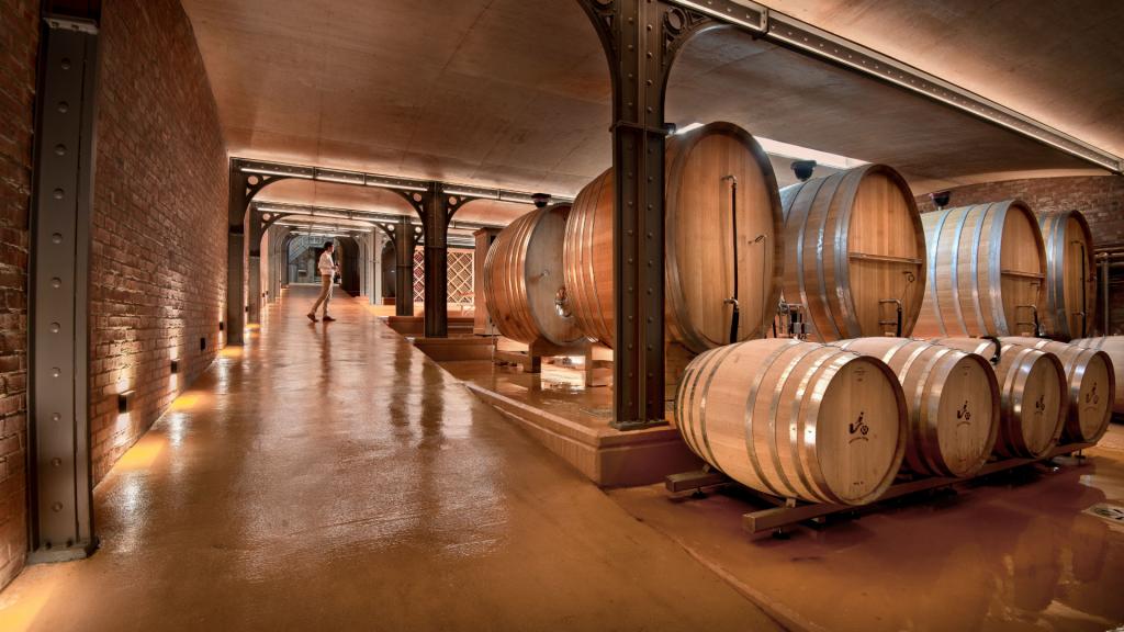 babylonstoren-cellar-tour-wine-winemaking-wine-tunnel-capewinelands