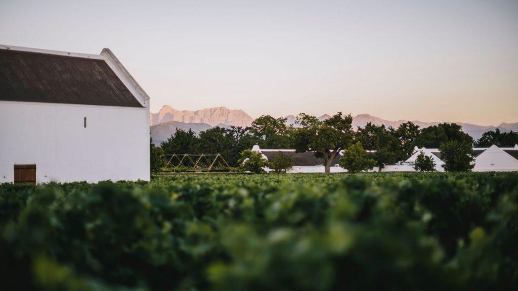 open-air-activities-in-and-around-franschhoek-wine-valley-franschhoek-valley-cape-winelands-cape-town-outdoor-activities-explore-franschhoek-babylonstoren-farm-wine-tasting-hiking-gardening-garden-tour